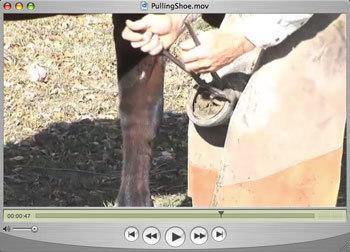 Pullingshoe