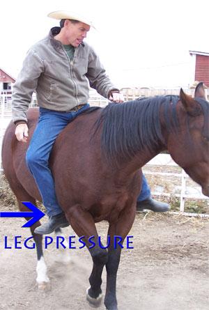 Legpressure2_1
